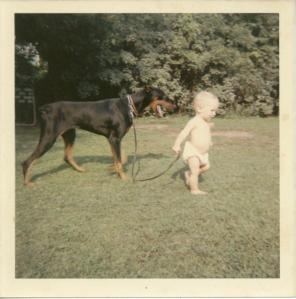 06. baby walks doberman-l