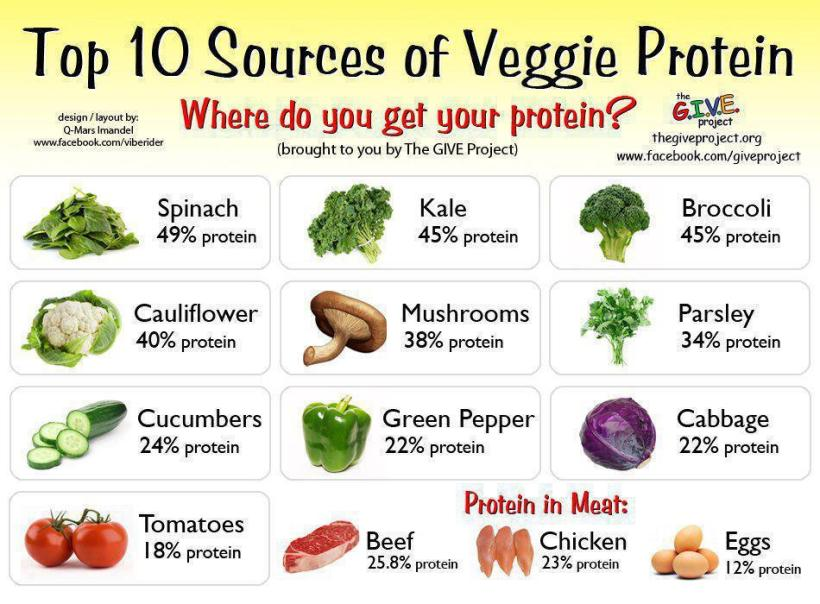 Get Protein From Plants!